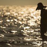 Tradisi Perempuan Pulau Solor Saat sebelum Menikah